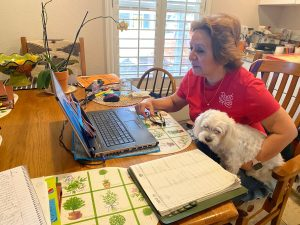 Virtual Home Visits | Root for Kids